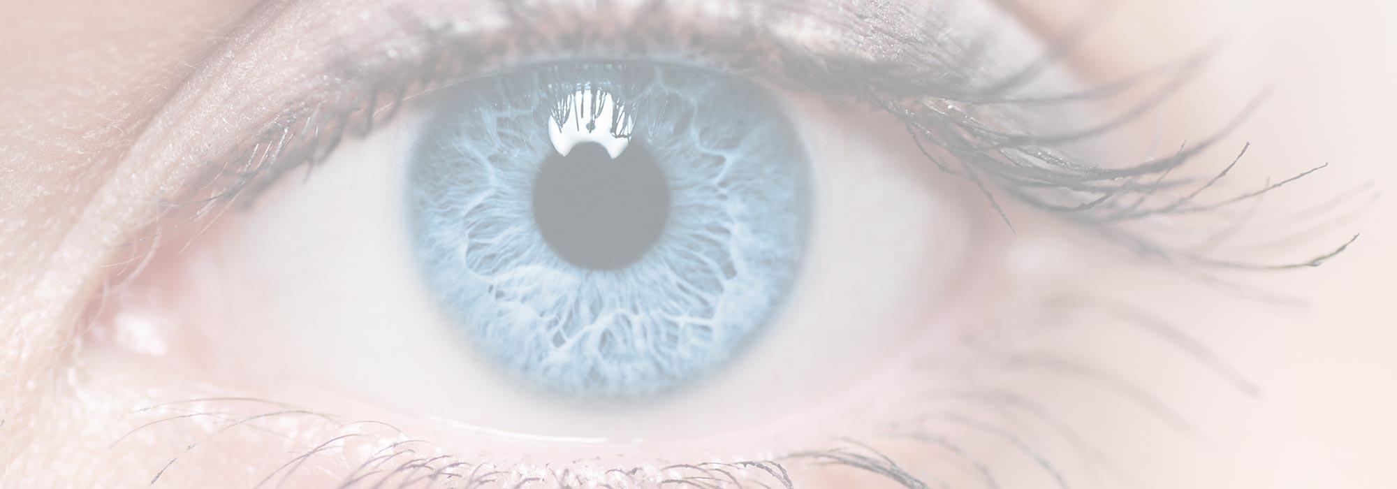 Leon Au Eyecare